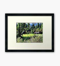 Whitefish Homestead (Montana, USA) Framed Print