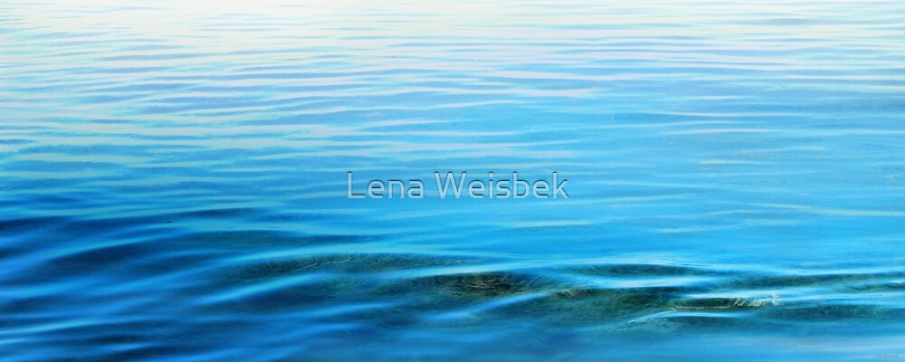 The Small Noises of Calm by Lena Weiss