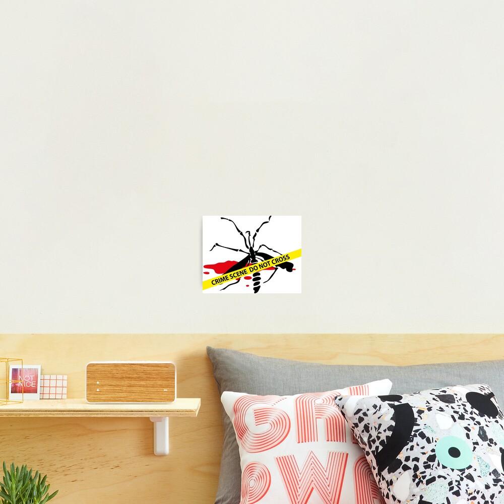 Crime scene mosquito Photographic Print