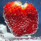 Strawberry Bubbles by Malcolm Katon