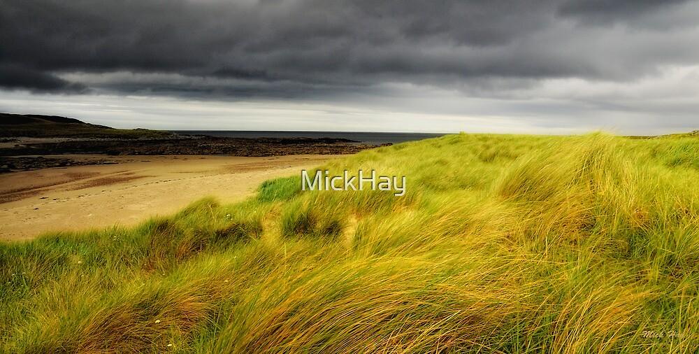 Sea Grass by MickHay