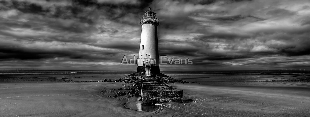 End of Days by Adrian Evans