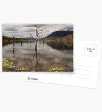 Lake Somerset. Postcards