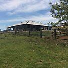 Farm outbuilding by Liz Worth