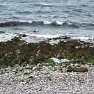 Scottish Shoreline by BlueMoonRose