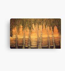 Birches in the Sun Canvas Print