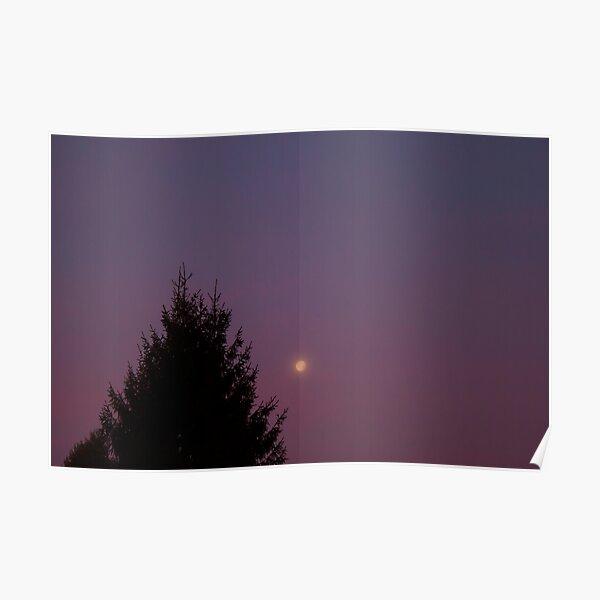 Twilight Morning 2 Poster