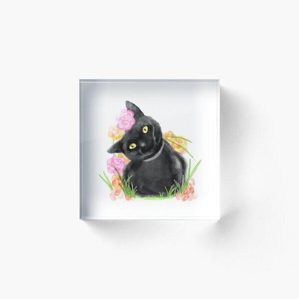 Spring Kitty Acrylic Block