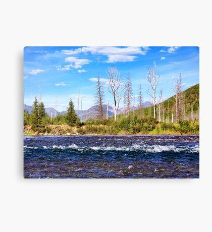 View into Glacier National Park (Montana, USA) Canvas Print