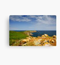 Great Saltee Island, County Wexford, Ireland Canvas Print