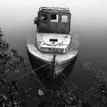 Wrack im Nebel von Andrew-Hocking