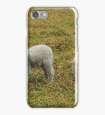Lamb and Ewe iPhone Case/Skin