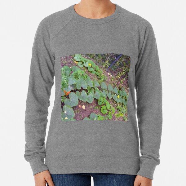 Pumpkin Foliage, Blossom & Fruit Lightweight Sweatshirt