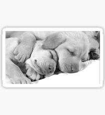 Sweet dreams Sticker