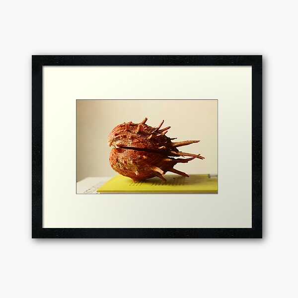 Red oyster seashell, heart shape, yellow book, top, thorny Framed Art Print