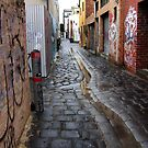 wet laneway Melbourne Australia by Toni  Fuller