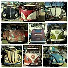 VW Vintage cars by Toni  Fuller