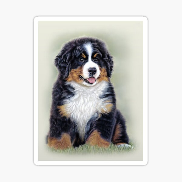 Puppy Love - Bernese Mountain Dog Puppy Sticker