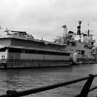HMS Ark Royale by Christopher Ryan