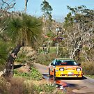 Targa West 2011 - Car 57 - Photo 1 by Psycoticduck