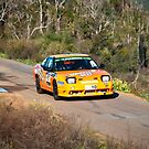 Targa West 2011 - Car 57 - Photo 2 by Psycoticduck