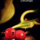 Holly Christmas. by Sara Sadler