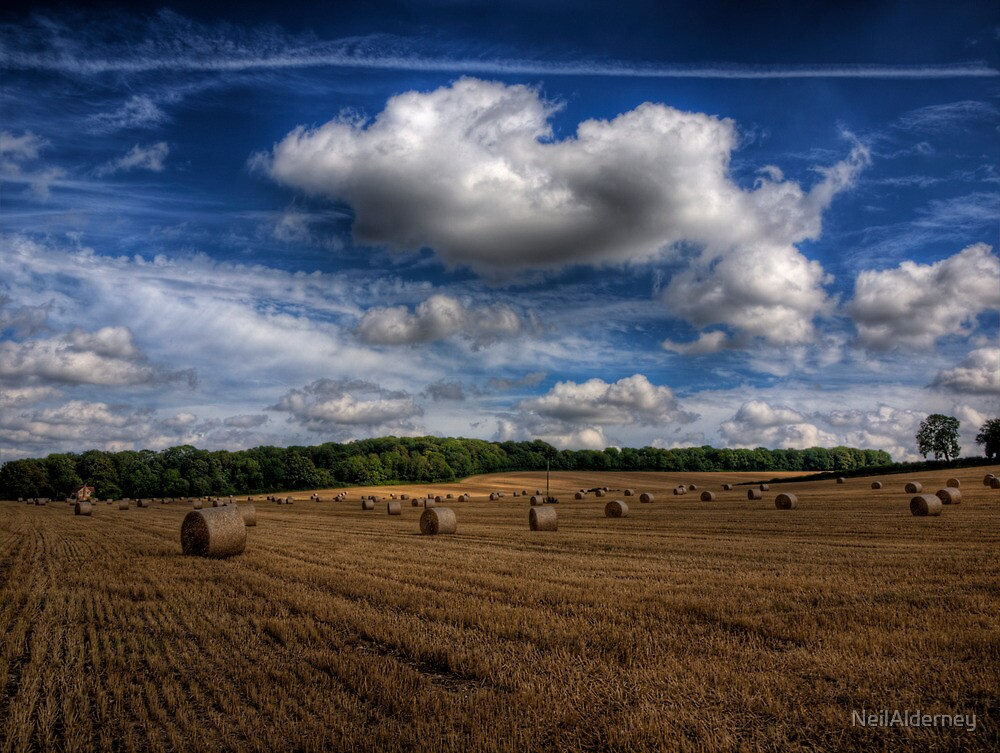 Hay Bales near Winchester, Uk by NeilAlderney
