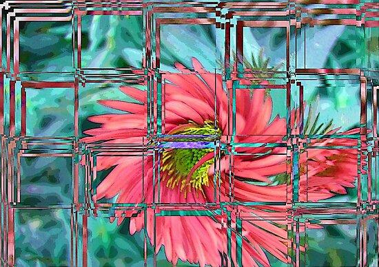 Window to my world!!! © by Dawn Becker