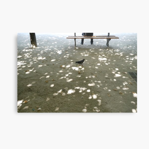 an afternoon in the park Metal Print