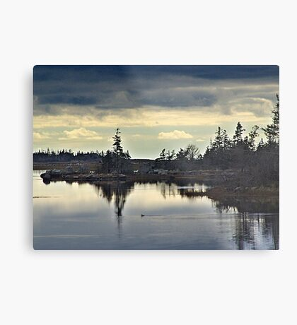 Early Morning In The Salt Marsh Metal Print