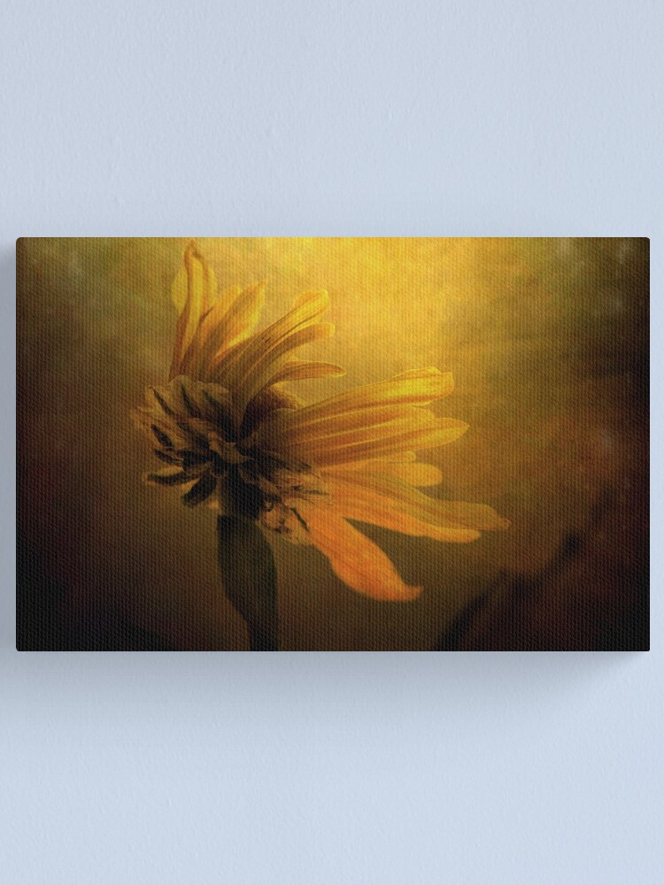 Alternate view of The Sun Worshiper Canvas Print