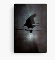 By crow light Metal Print