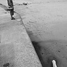 Chien dans la mer by Nick  Gill