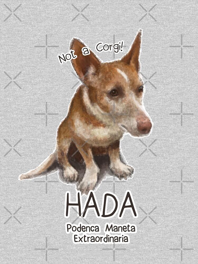 Hada the Podenca Maneta by elspethrose