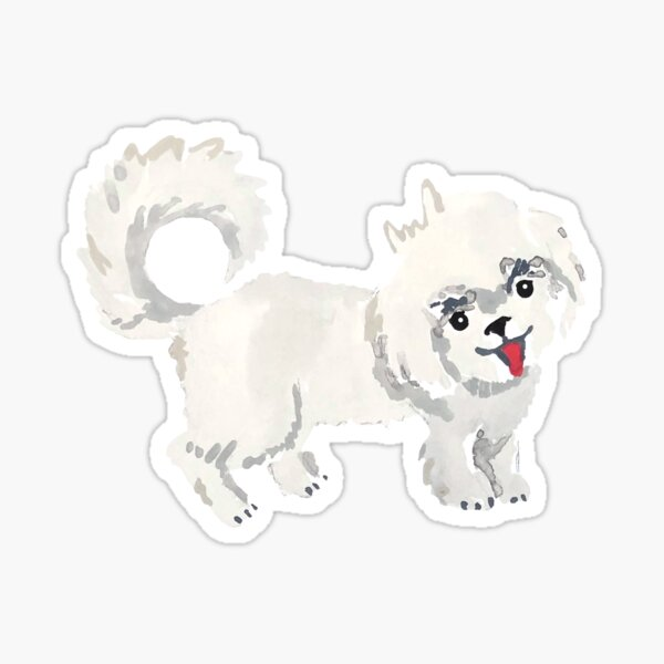 Maltese Dog Illustration Sticker
