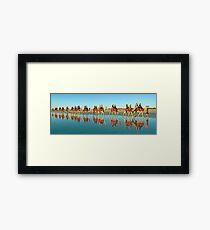 BEACH TRANSPORT Framed Print
