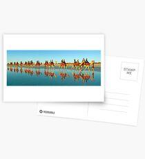 BEACH TRANSPORT Postcards