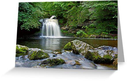 West Burton Falls by Andrew Leighton