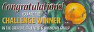 CTU: Challenge Winner Banner by Shani Sohn