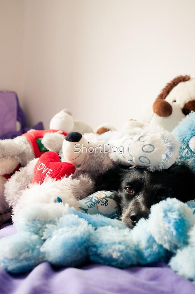 Toys by ShortDog