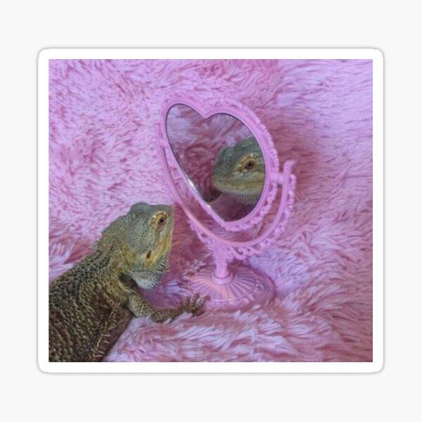 bearded dragon admiring himself in mirror Sticker