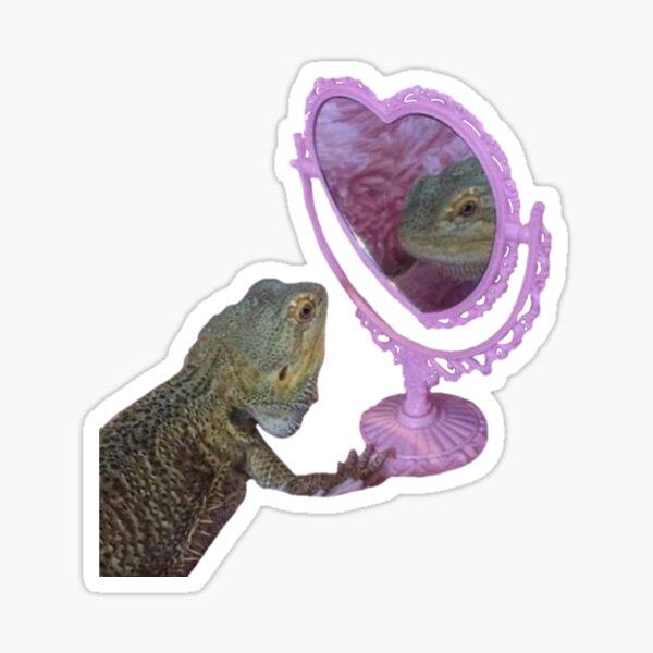 bearded dragon in mirror Sticker