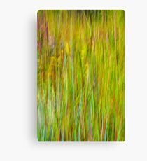 End of Summer Kitty Todd Nature Preserve An Abstract Expressionism Canvas Print