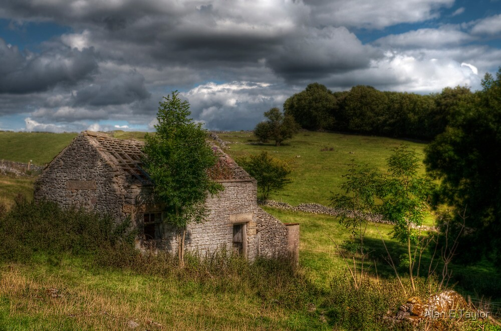Sheep Shed by Alan E Taylor