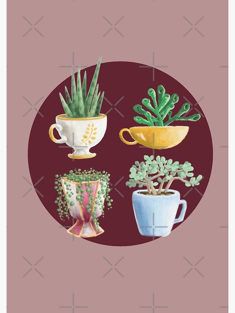 teacup succulents by PicajoArt