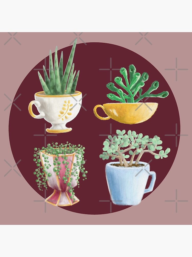 teacup succulents by PicajoArt