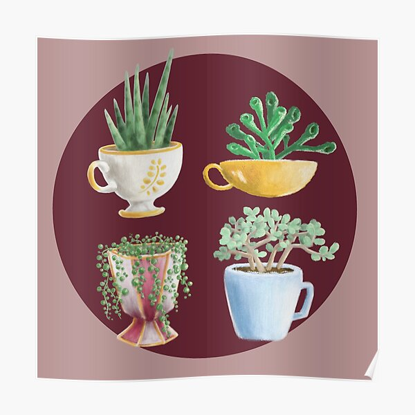 teacup succulents Poster