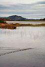 Still Waters by Kasia-D