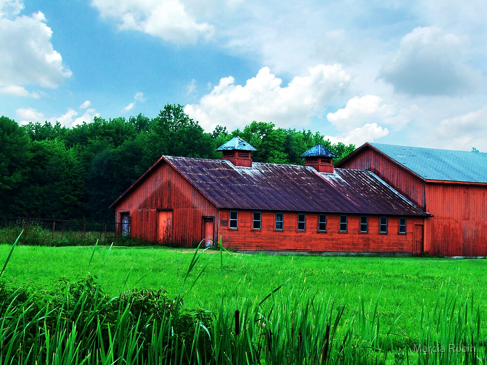 Quot Big Red Horse Barn Quot By Marcia Rubin Redbubble
