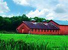 Big Red Horse Barn by Marcia Rubin